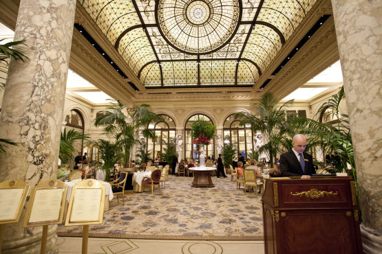 palm court image.jpg