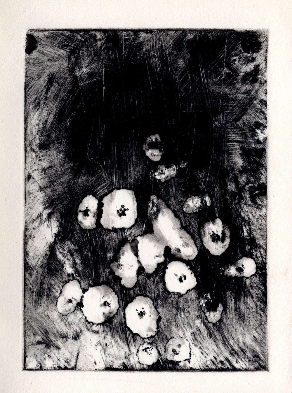 All the Little Live Things, page 4 monotype, etching ink on Rives BFK Lightweight