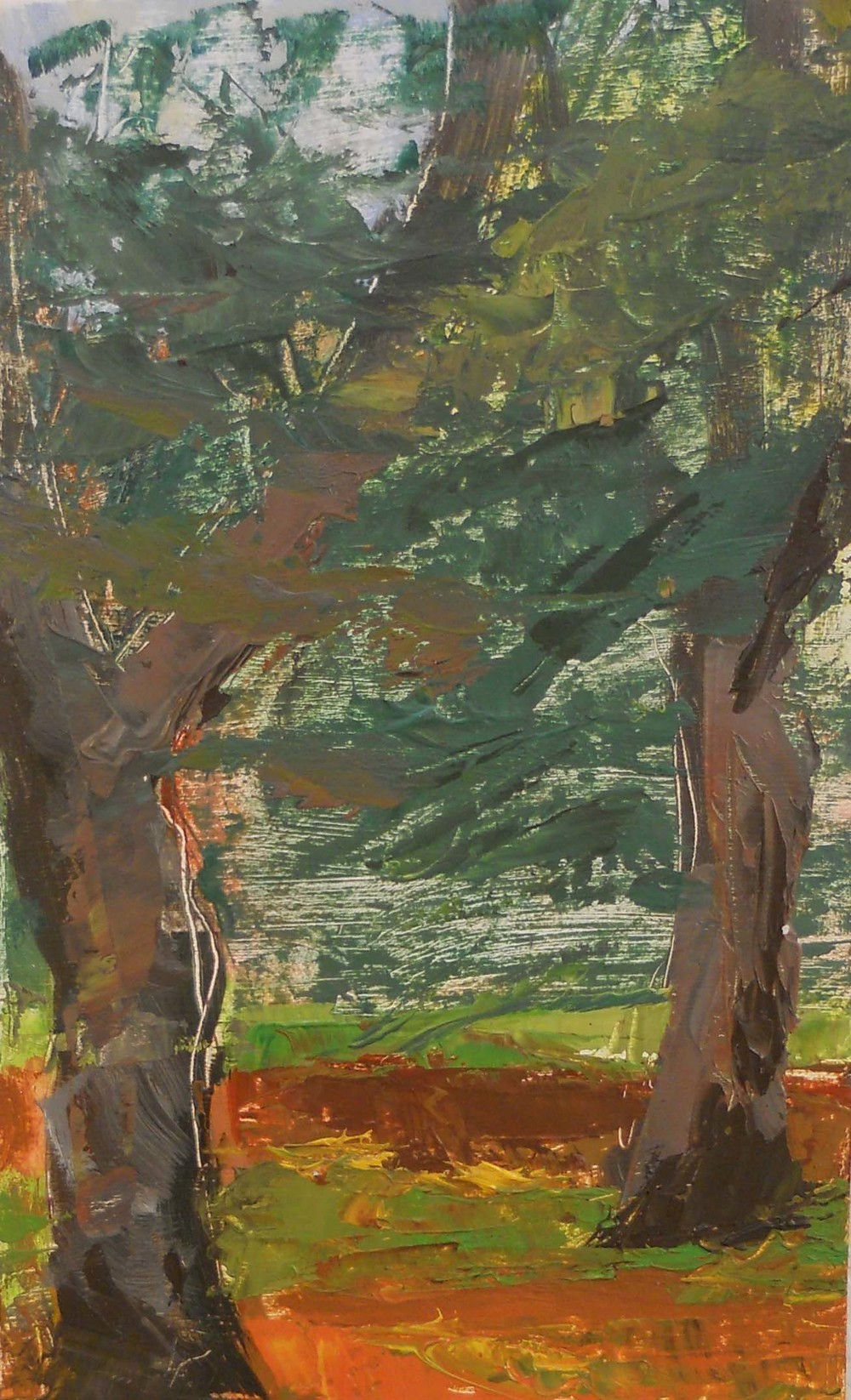 Longwood Beech 3
