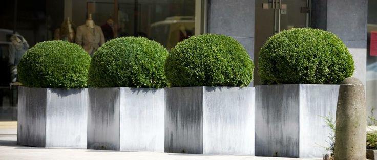 Zinc Planters by Domani — Parterre on zinc trough planter, zinc planter trays, zinc finish,