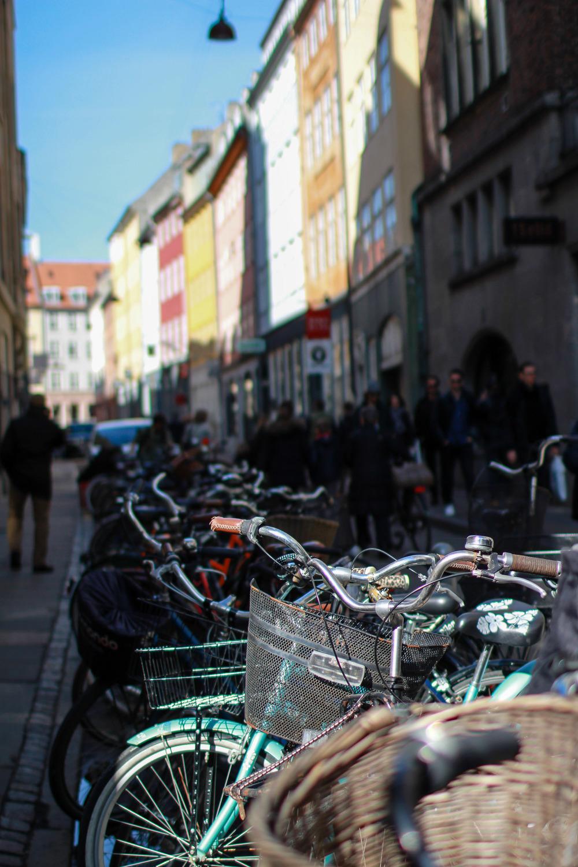 CopenhagenDenmark-10.jpg