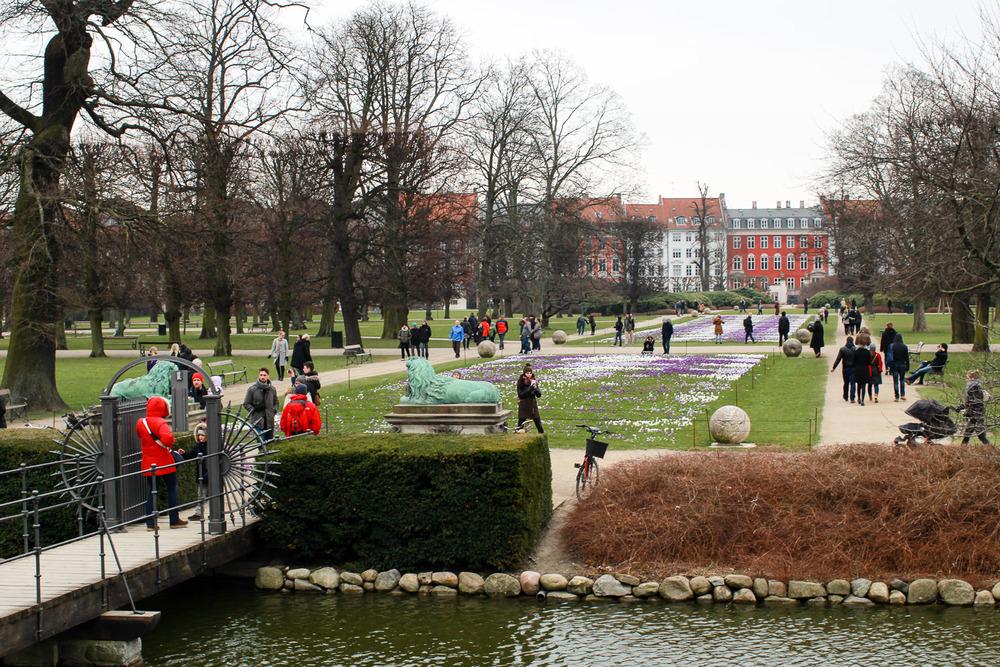 CopenhagenDenmark-61.jpg