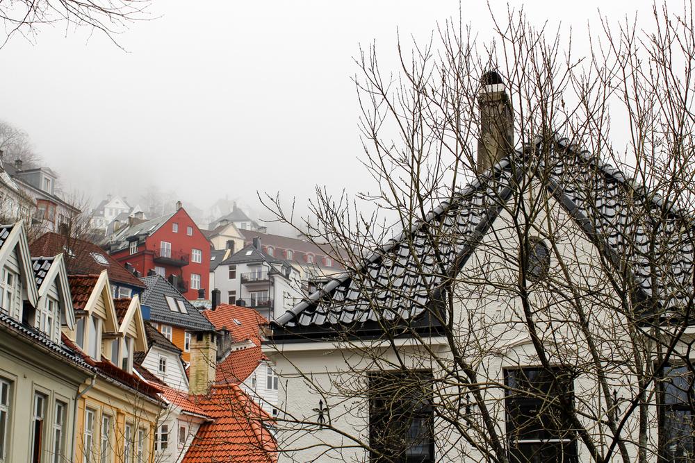 BergenNorway-48.jpg