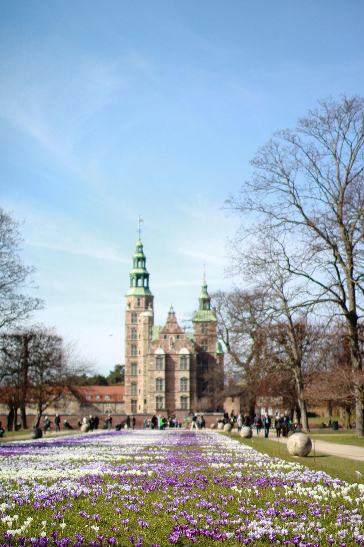 CopenhagenDenmark-18.jpg