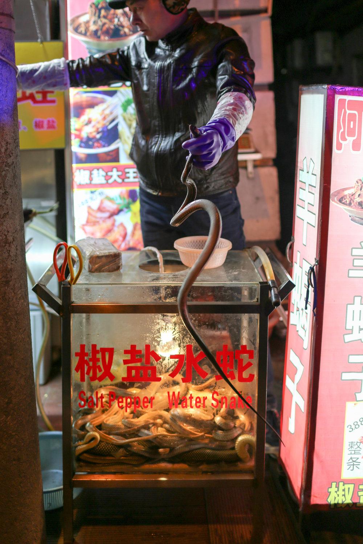 Shanghai-23.jpg