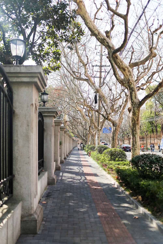 Shanghai-41.jpg