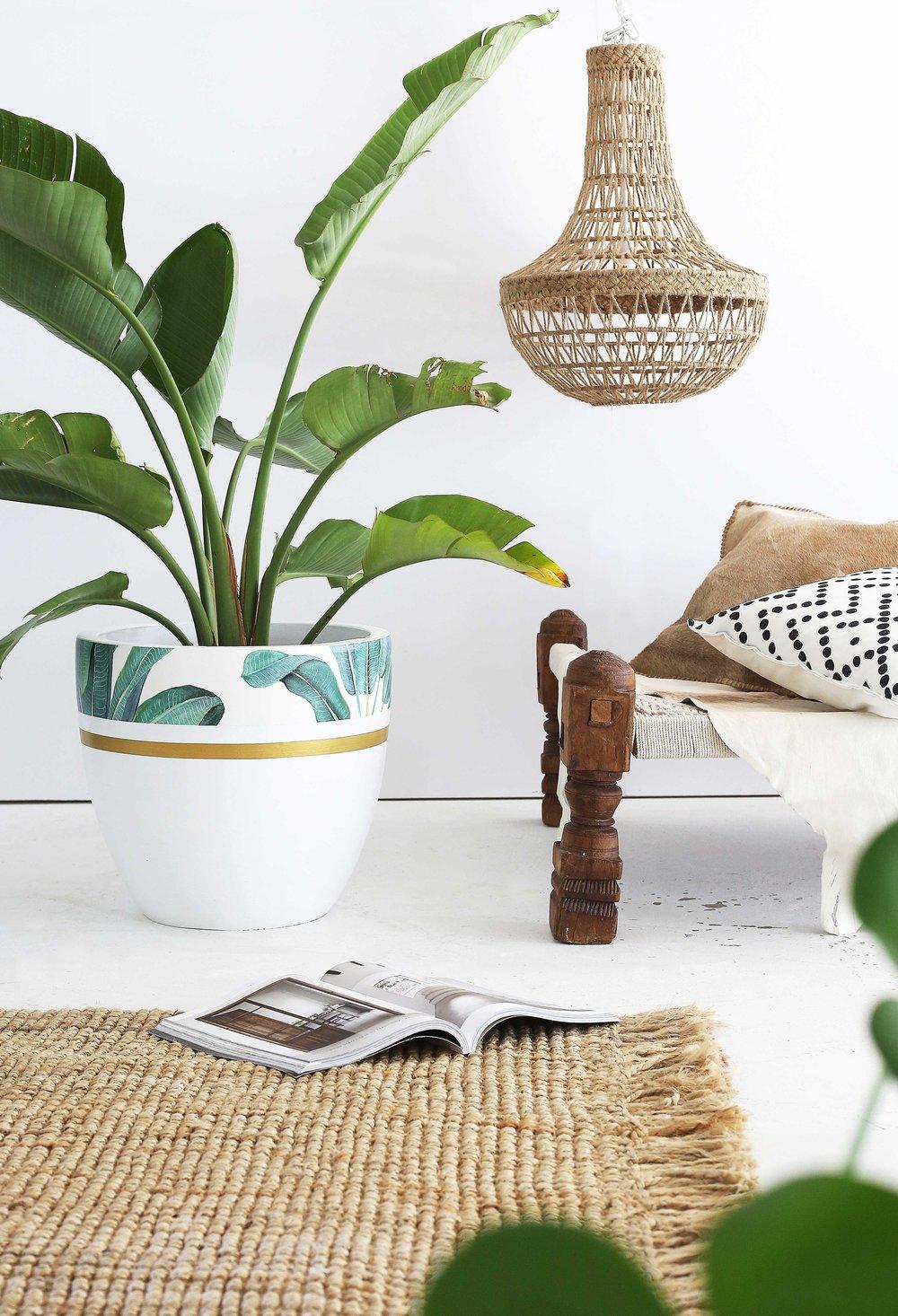 Banana-Palm-White-.jpg