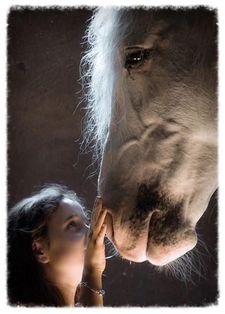 girl horse.jpg