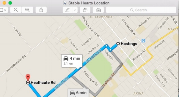 Stable Heart location zoom
