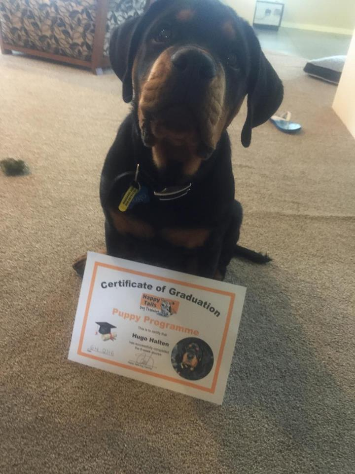 Hugo proudly displaying his graduation certificate