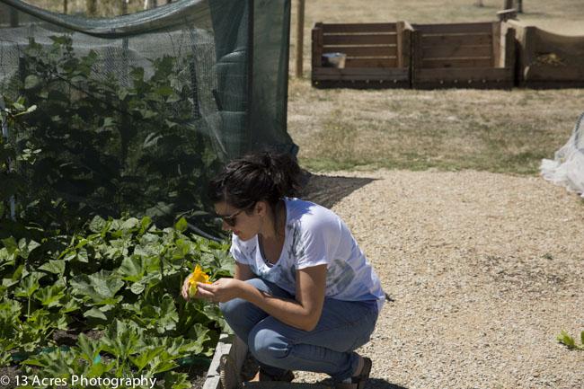 13 Acres Garden-5 || thinkbiglivesimply.com