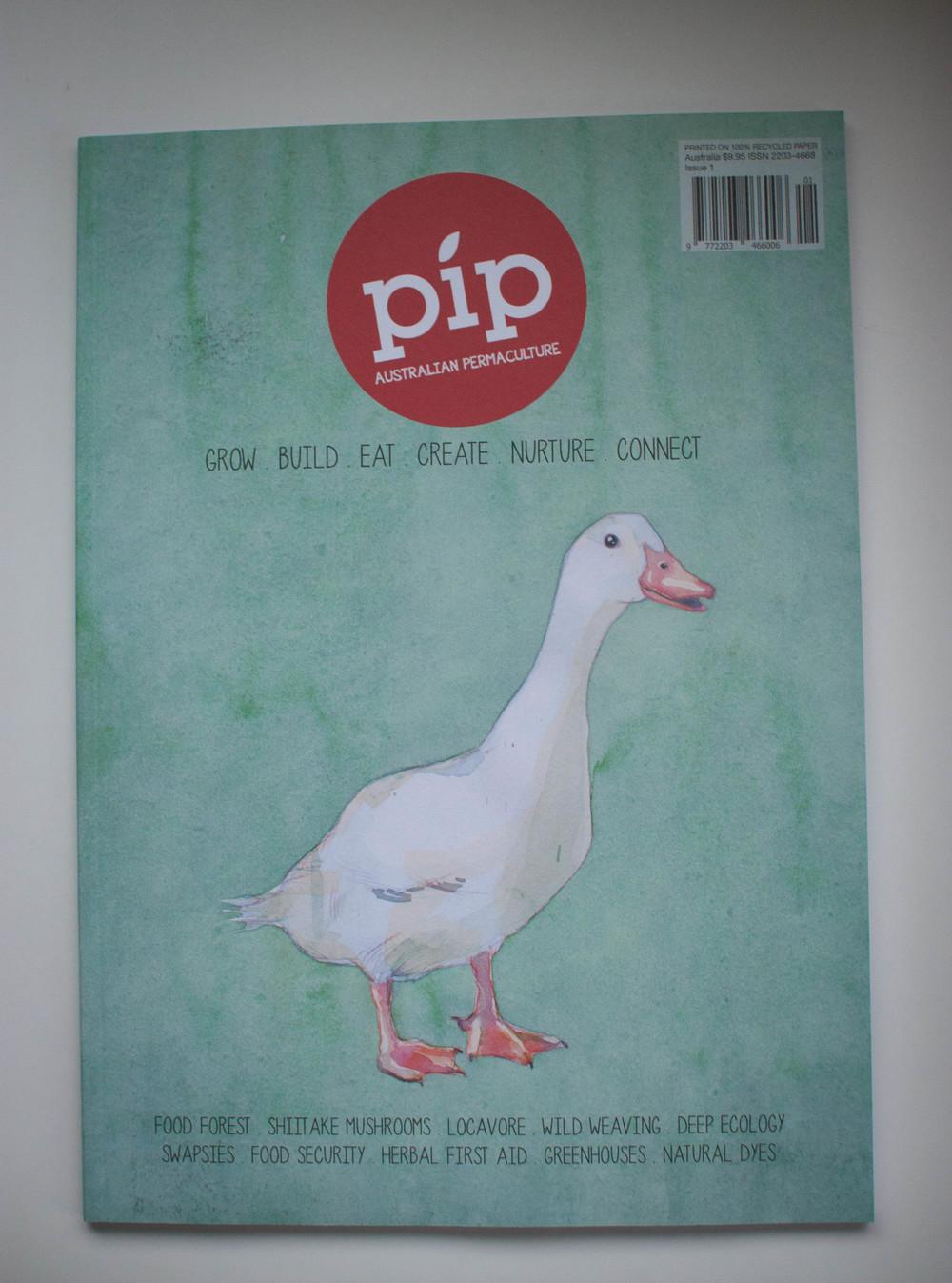 Pip Magazine || thinkbiglivesimply.com