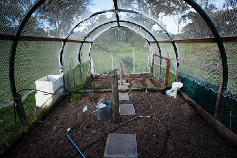 Covered Veggie Patch Inside || thinkbiglivesimply.com