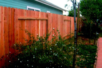 good neighbor 2.jpg