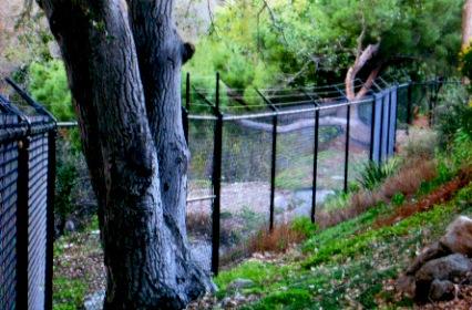 deer fence 2.jpg