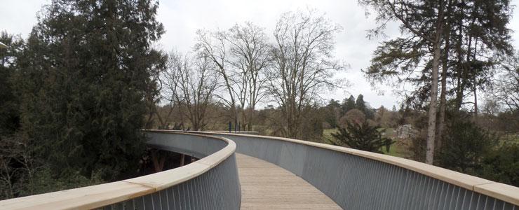 Westonbirt Treetop Walkway 04