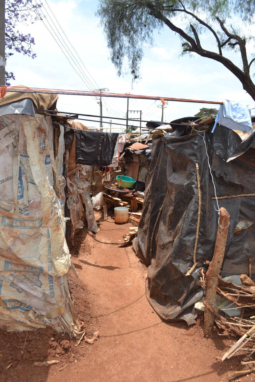 IDPdwellings.jpg