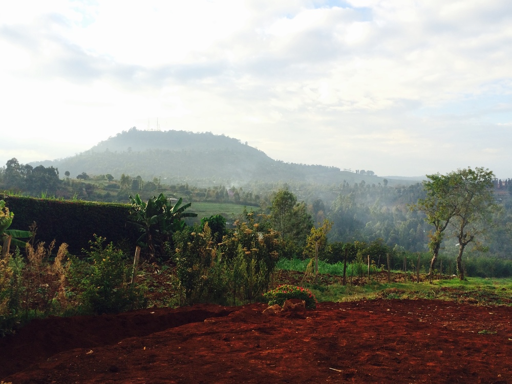View of Nyeri hill from The Metropolitan Sanctuary site, Kamakwa.