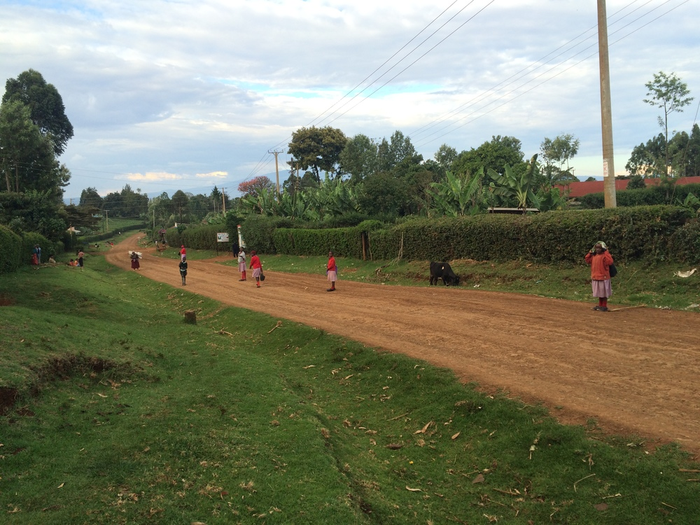 Local children walk home from school in rural Kenya.