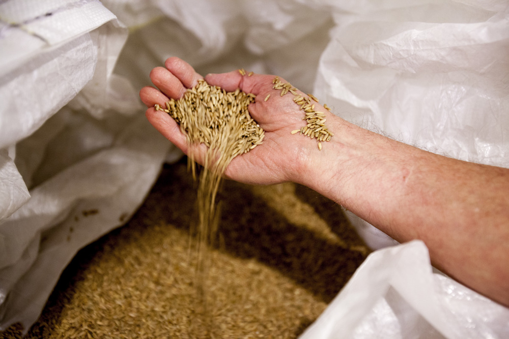 Grains are sourced from local Virginia farms.