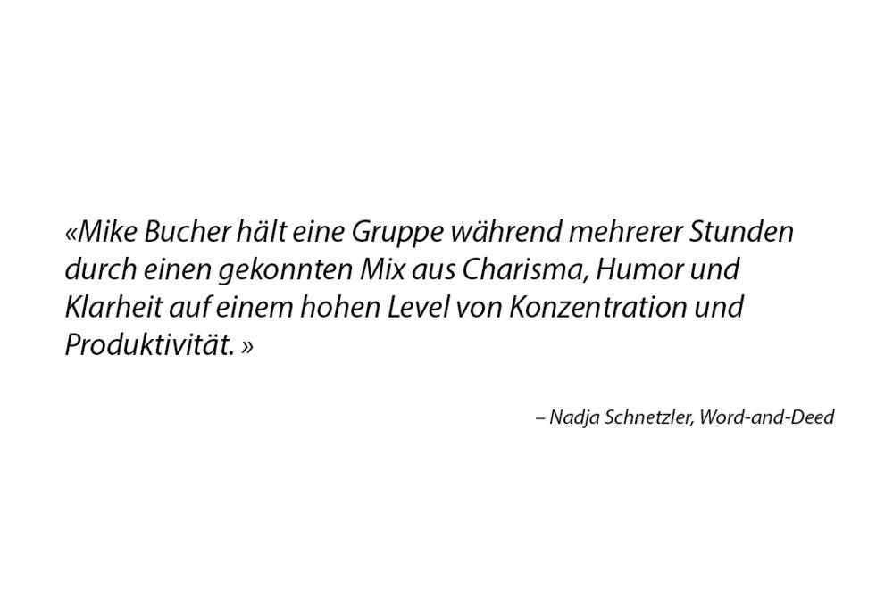 Zitat_02_Schnetzler.jpg