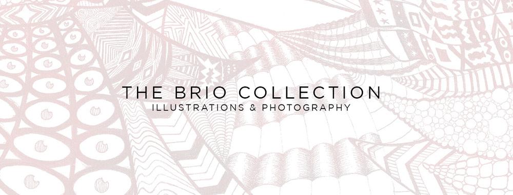 ALBOE - The Brio Collection
