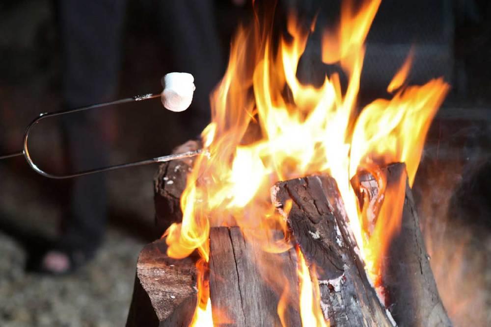 fire-roast.jpg