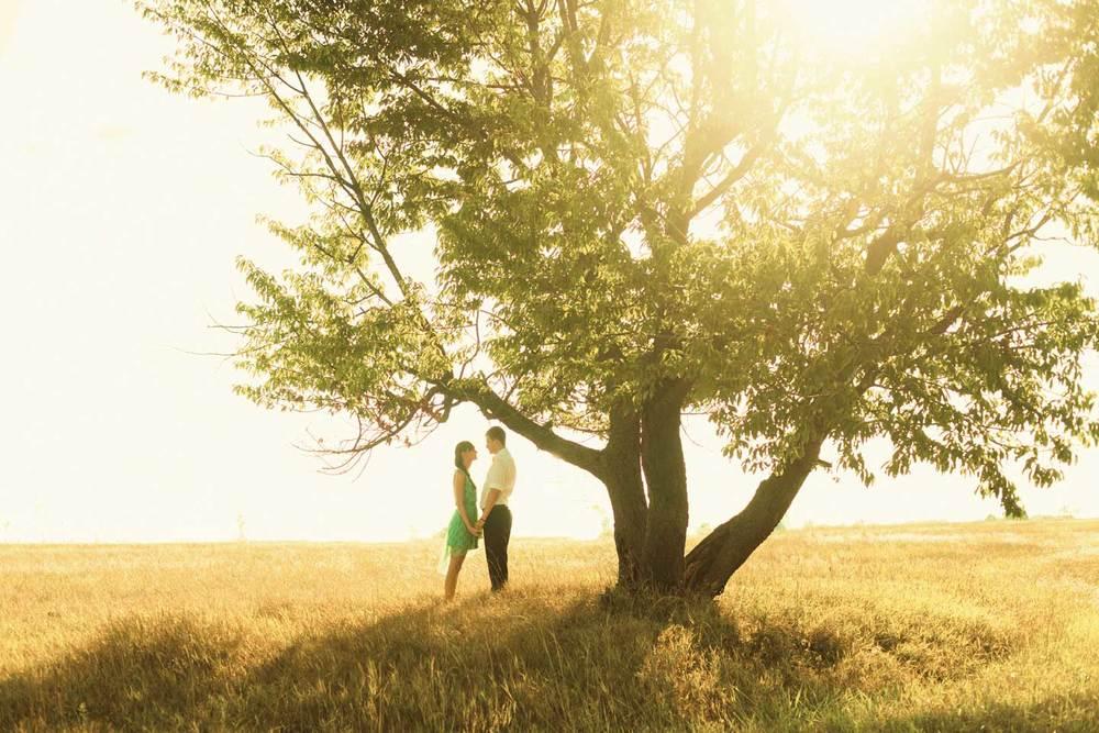 couple-tree.jpg