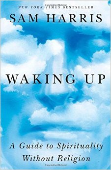 "<a href=""http://amzn.to/1MwHMif"">Waking Up<strong>There is a grain of truth in the ugly mess of human religion. Harris plucks it out for us.</strong></a>"