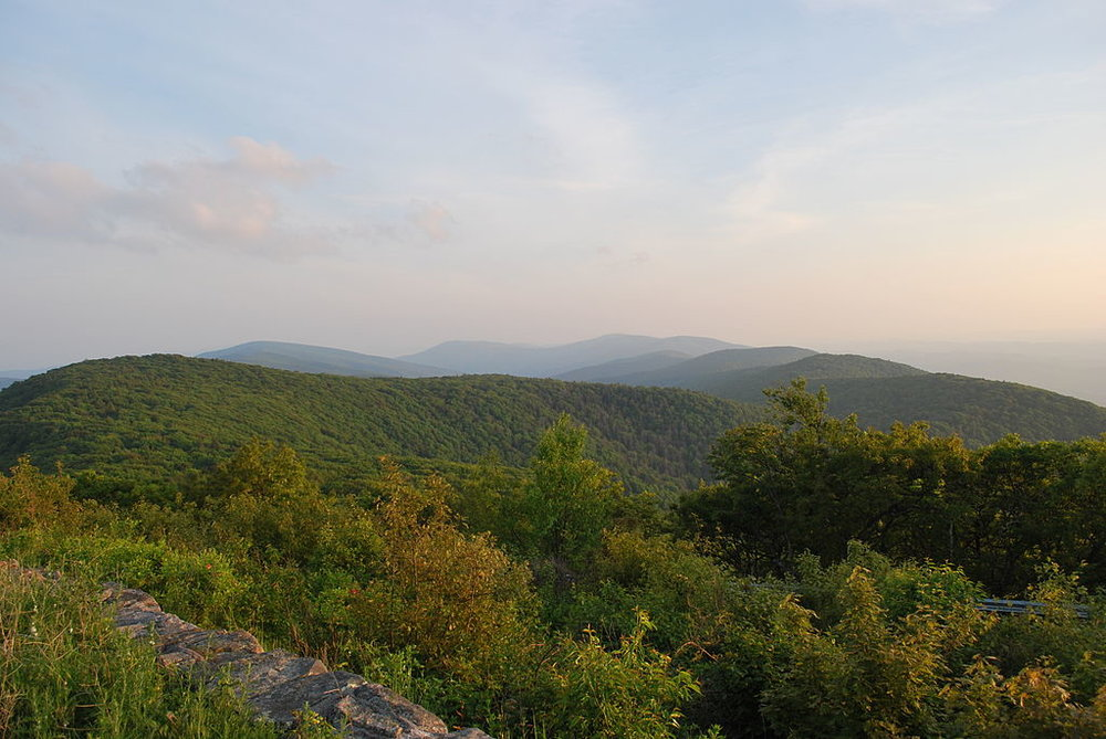 Looking south from Reddish Knob on Shenandoah Mountain in George Washington National Forest. By M. Powell [CC BY-SA 3.0 (http://creativecommons.org/licenses/by-sa/3.0)], via Wikimedia Commons