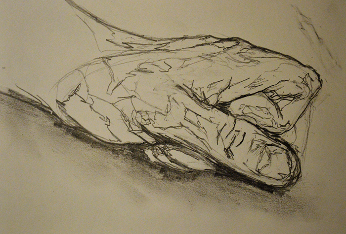 """Left Hand 1, pencil on paper, 8"""" x 6""""."""