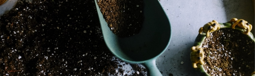 Join the Composting Community!