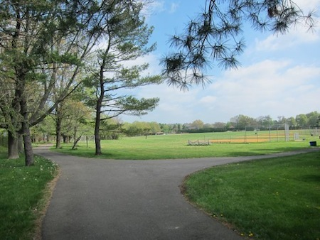 Paved path at park perimeter with green fields in background.