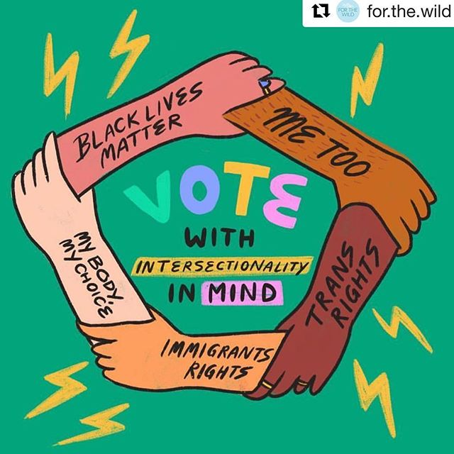 "+ indigenous rights, + environmental/wildlife protection,... Repost from @for.the.wild and @theguerrillafeminist It's time we voted for the benefit of others, for those that cannot share their voice, and not just for ourselves. We need to #vote for the harm-reduction and safety of our communities and the wilds. We recognize voting is a privilege, and aren't here to spoon feed you lies about our belief in this flawed, and unjust system. We're just here to share a little of the accountability we feel to do better for the lives that have struggled, while others have benefited. This is one of the most critical, terrifying, and infuriating times in our lives but we are magic and power. Let's use it. (Image RP @ashlukadraws // concept of ""intersectionality"" brought to us by Black legal scholar, Kimberlé Crenshaw)"
