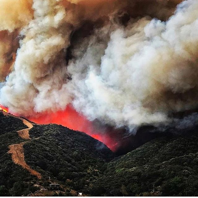 Praying for our canyon, the land, people and creatures of our beloved hills. 😭🙏💦 Mandatory evacuation of Topanga. We're safe with the pups in Venice.  #topanga #woolseyfire #malibu #santamonicamountains #fire #breathe
