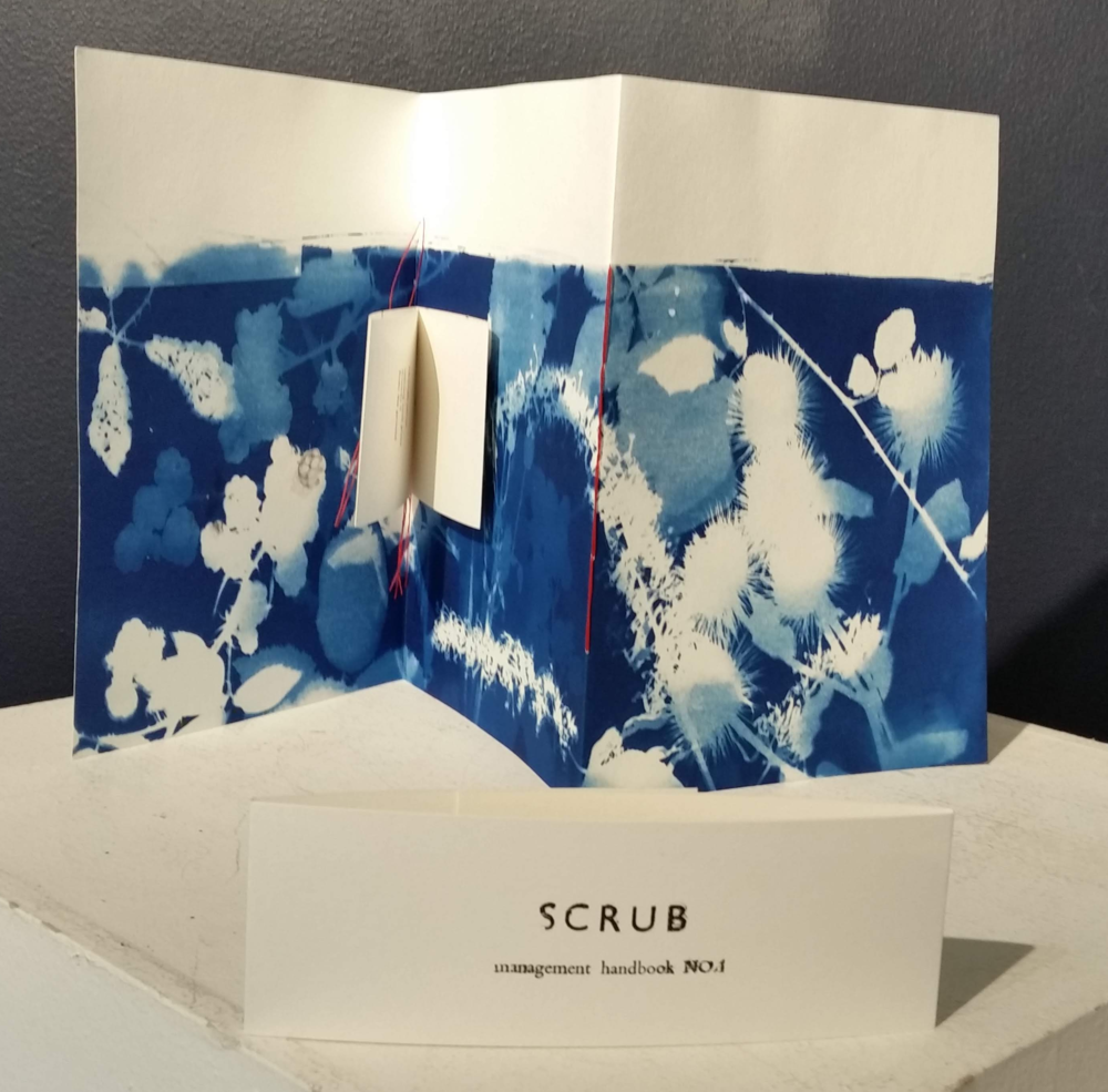 Caroline Harris - SCRUB: A Management Handbook (2018)'Scrub' is defined as a habitat dominated by shrubs or bushes, forming the margin between grassland or heath and woodland, and in coastal locations. Now recognised as ecologically valuable, it is also seen as a threat: scrub encroaches, and its species can be invasive. In built environments, scrub marks the ever-moving border between the human-made and the other-than-human.SCRUB Management Handbook is a series of poetic and language art works, this first series undertaken during a five-day residency at Singing Apple Press in Mere, Wiltshire.