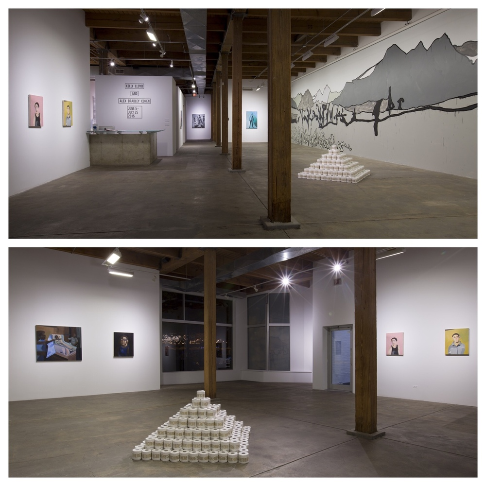 Installation view of Alex Bradley Cohen and Kelly Lloyd at Secrist Gallery through July 2015.   © Clare Britt Photo