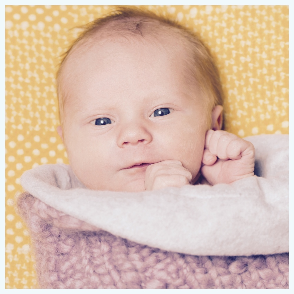 Welcome to the world little baby Fin Kaczynski. So fun to take pictures of the 9 day old baby.   © clarebrittphoto