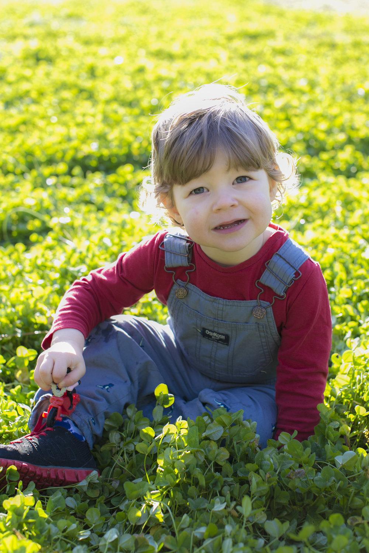 Family Session Photography North Carolina