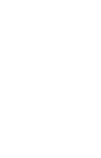Aleman Brewing