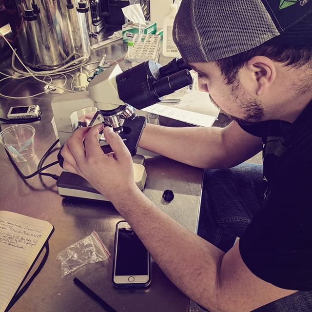 Just a student putting in work at the lab... #cleanbeer #happyfermentation #alemanonthecomeup