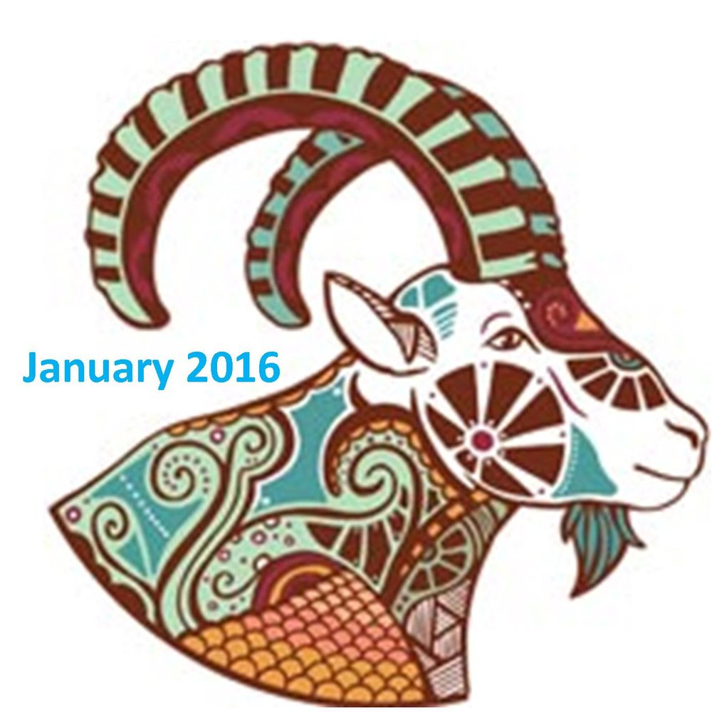 January 2016 Energetic Forecast