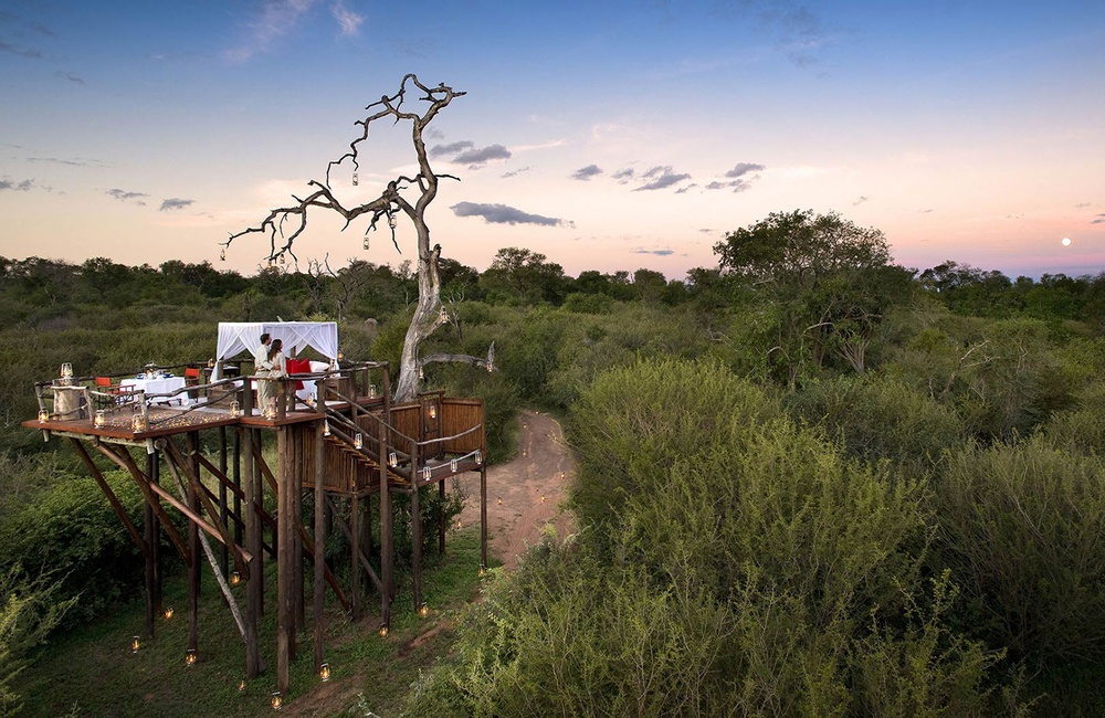 chalkey-treehouse-ultimate-safari-experience-sabi-sandsok.jpg