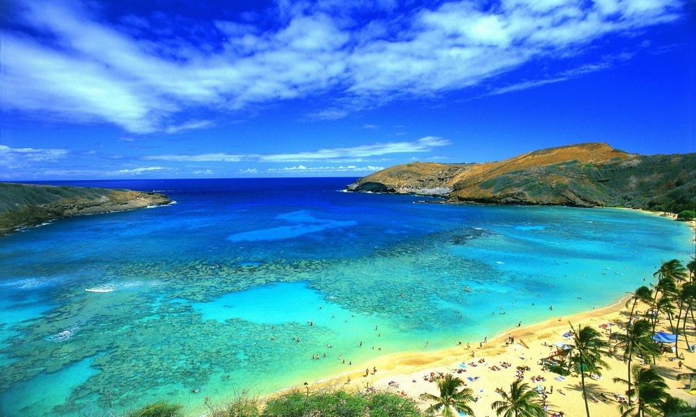 sea-beach-sky-palm-mountains-tropics-hanauma-oahu-hawaii-bay-usanature.jpg