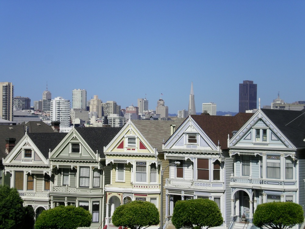 painted-ladies-272093_1920.jpg