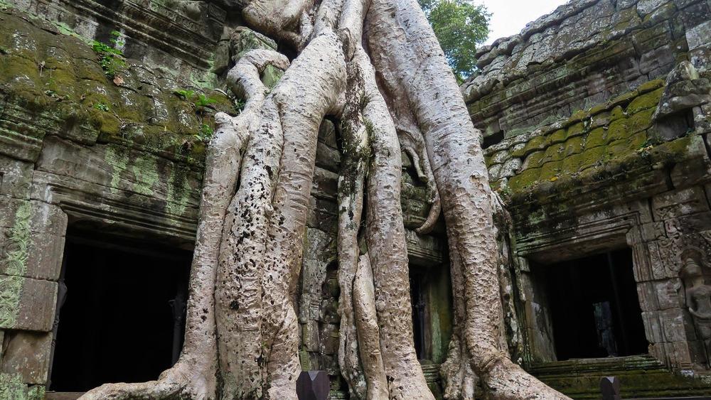 cambodia-603351_1920.jpg