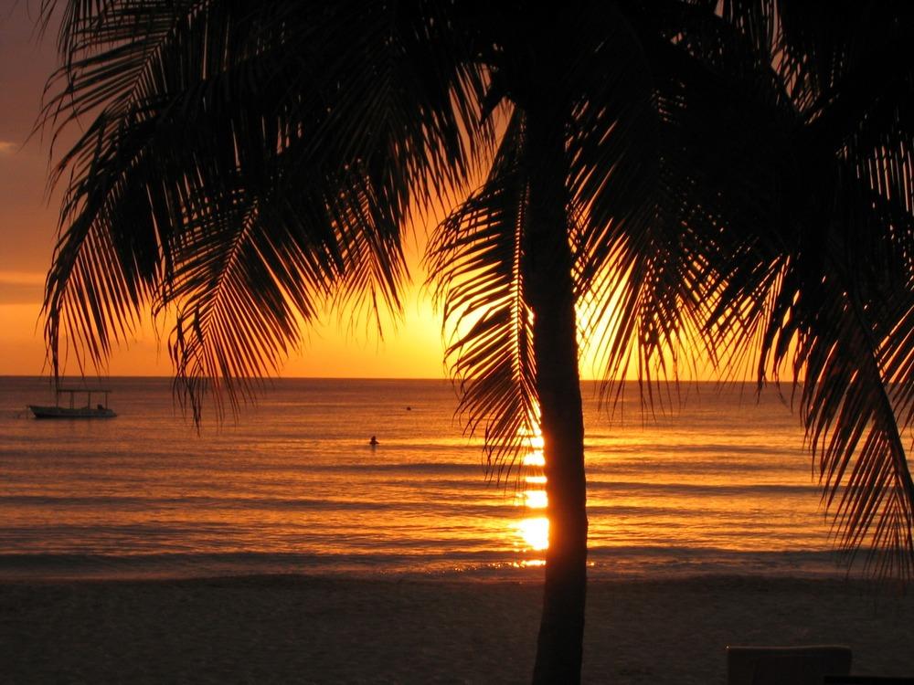 sunset-289132.jpg