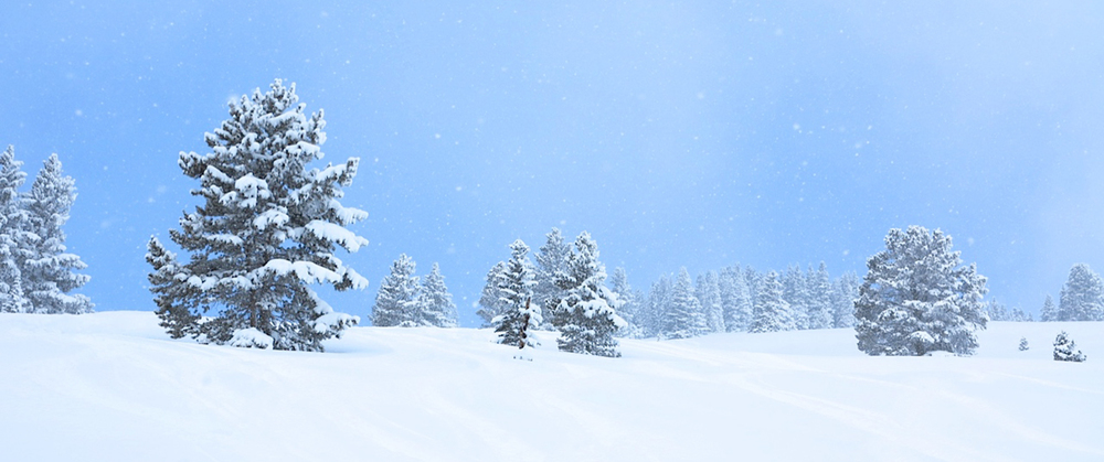 WinterWonderland-h.jpg