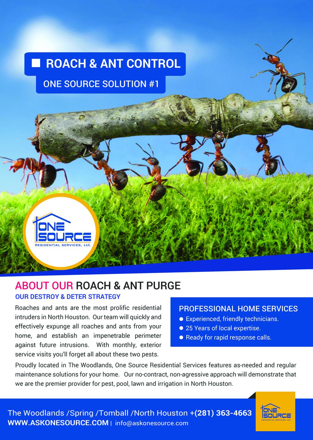 FlyerOneSourceRoach-Ant#1.jpg
