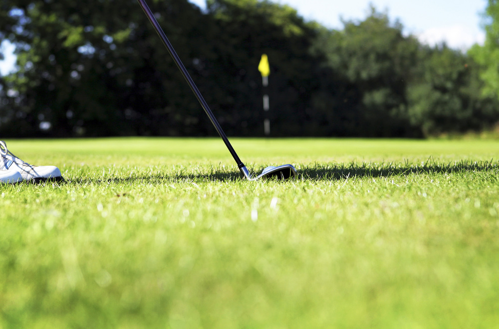 Golf Course Lawn In The Woodlands, Texas
